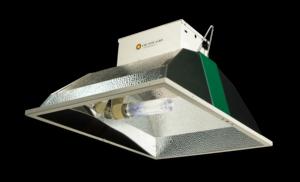 BLI 315W CDL Agro grow lights, Products